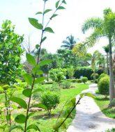 Veranda Pour Faire Une Chambre, Veranda Resort And Spa Hua Hin Blog