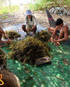 Fabricant Veranda Aluminium, Veranda Natural Resort Siem Reap