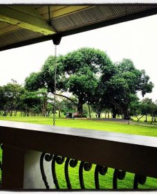 Alabang country club veranda menu | veranda 6m x 3