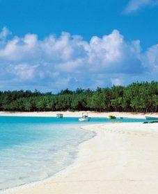 Veranda Palmar Beach Ile Maurice Veranda Renoval Prix